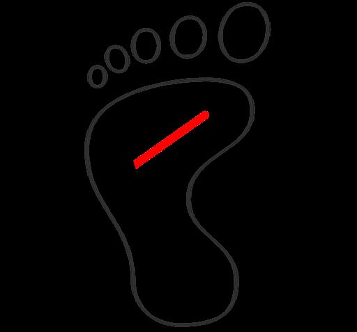 Fiókország